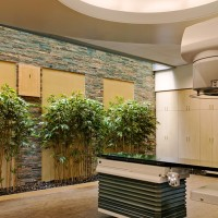 Oncology Treatment Facilities/Linear Accellerator Vaults