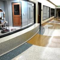 Veterinary Clinics/Animal Hospitals